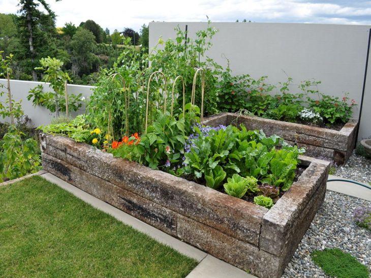 Vegetable Garden Ideas 15