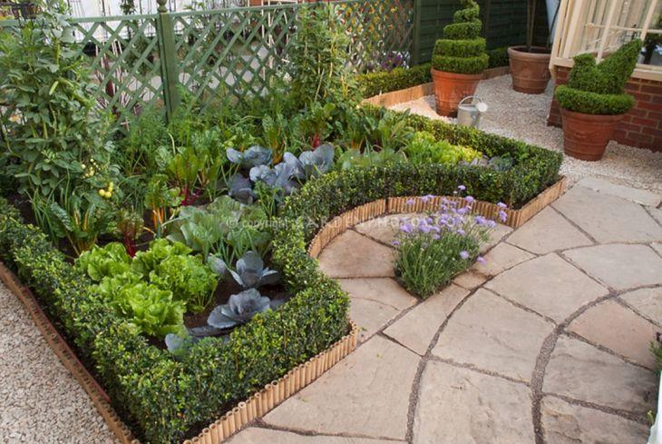 Vegetable Zen Garden Ideas 4