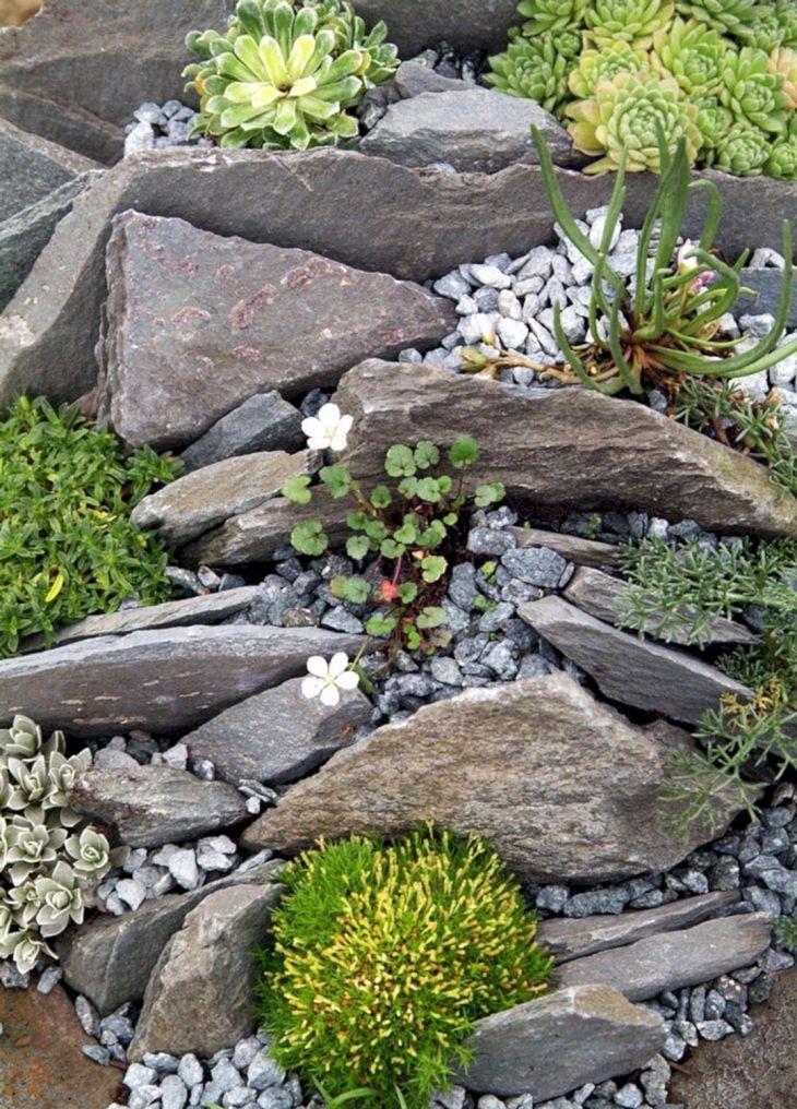 Beautiful Rock Garden 190
