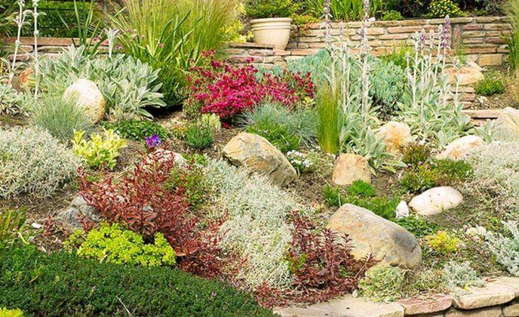 Beautiful Rock Garden 210