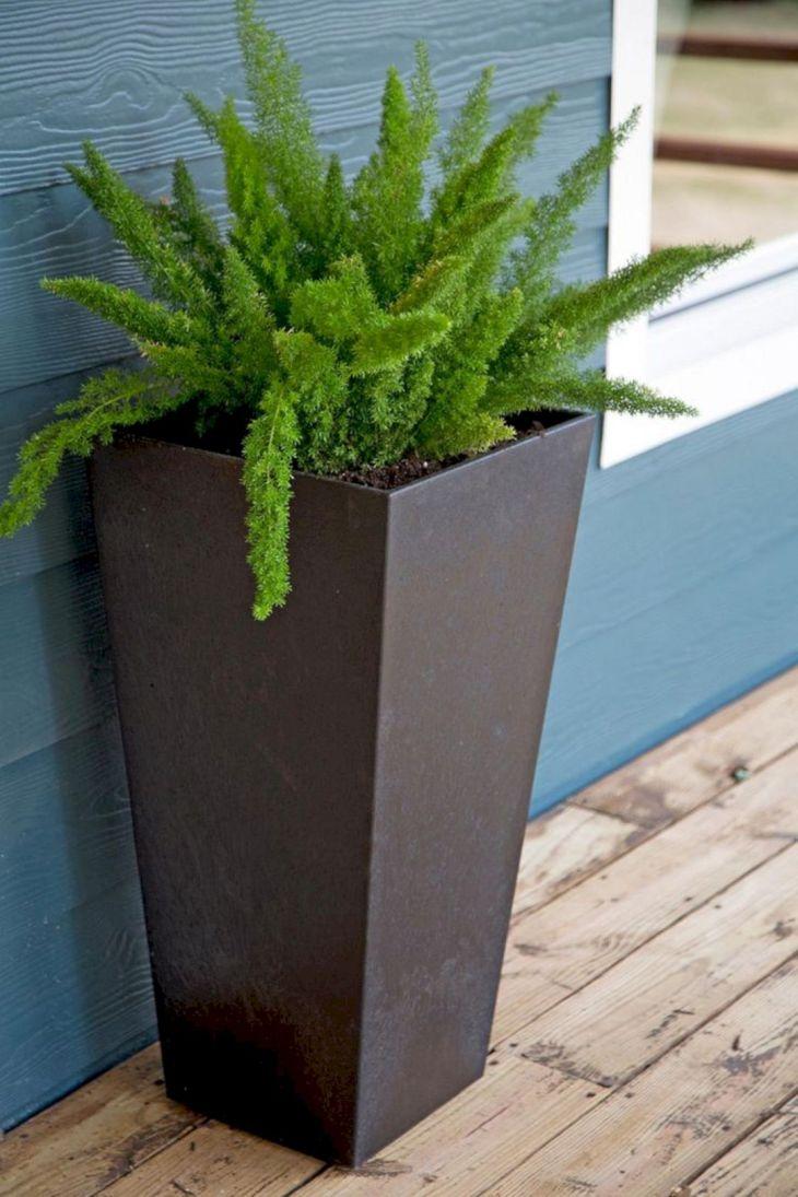 Contemporary Outdoor Planters Ideas 19