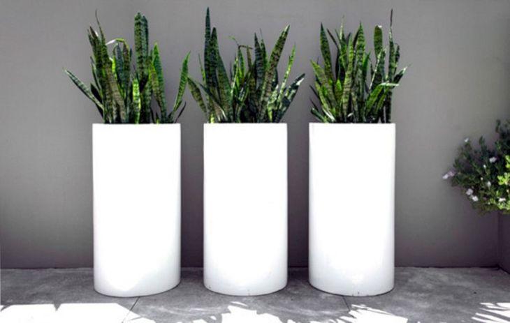 Contemporary Outdoor Planters Ideas 5