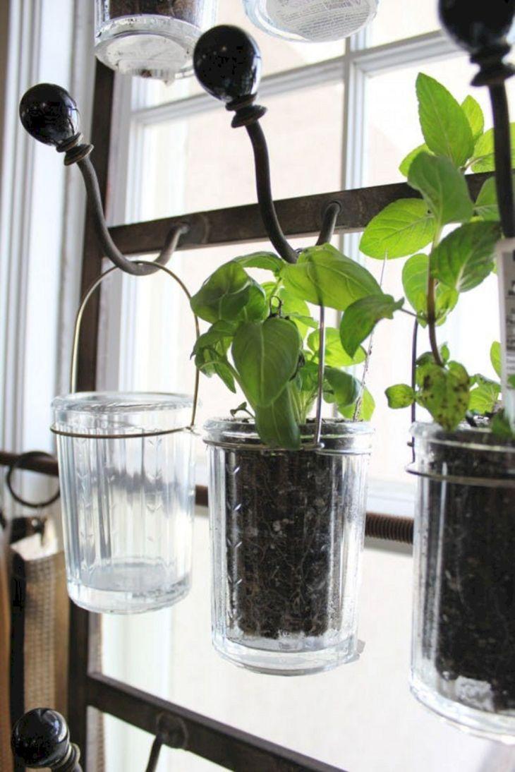 Indoor Herb Garden 170