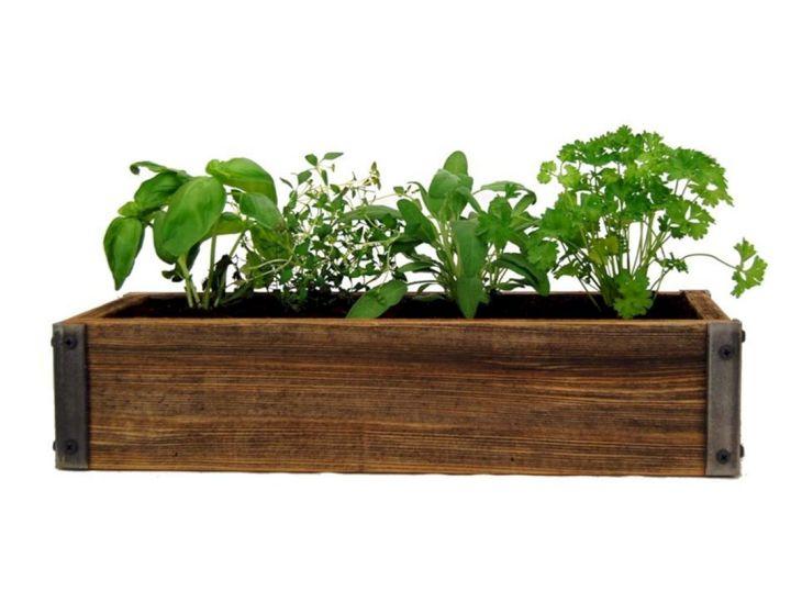 Indoor Herb Garden 230