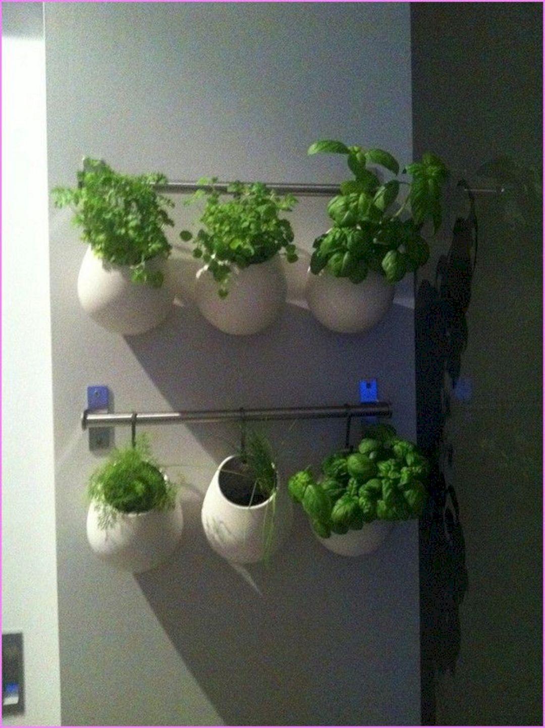 Indoor Herb Garden 260