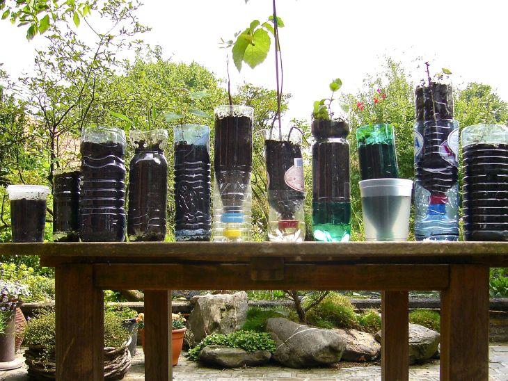 Using neatly arranged used bottles