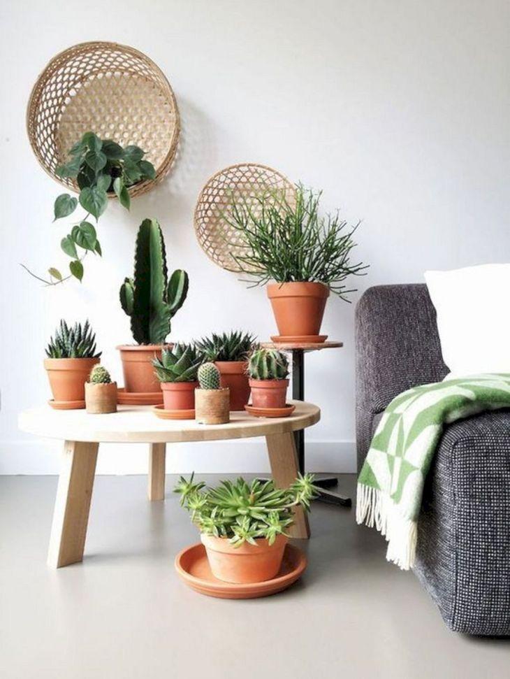 Beautiful Pot Garden ideas