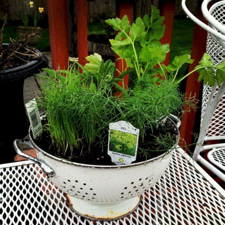DIY Pot Garden Design Ideas