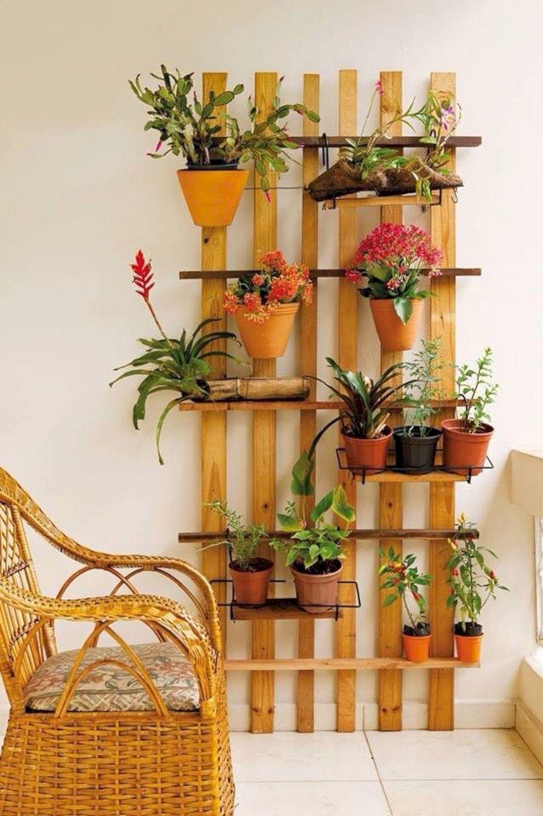 Best Simple Indoor Garden