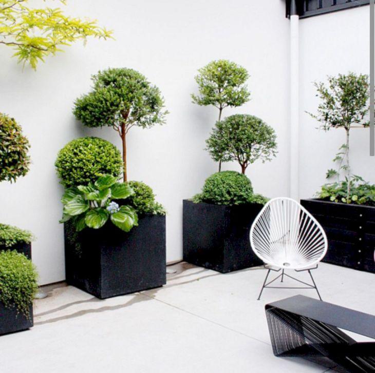 Indoor Garden Decoration Ideas