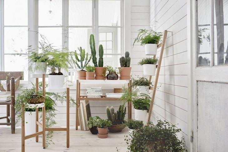 Awesome Indoor garden Ideas