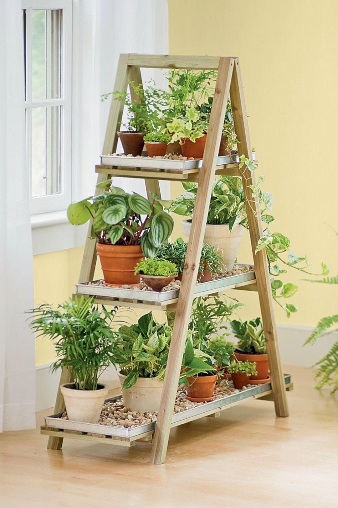 DIY Indoor Garden Ideas