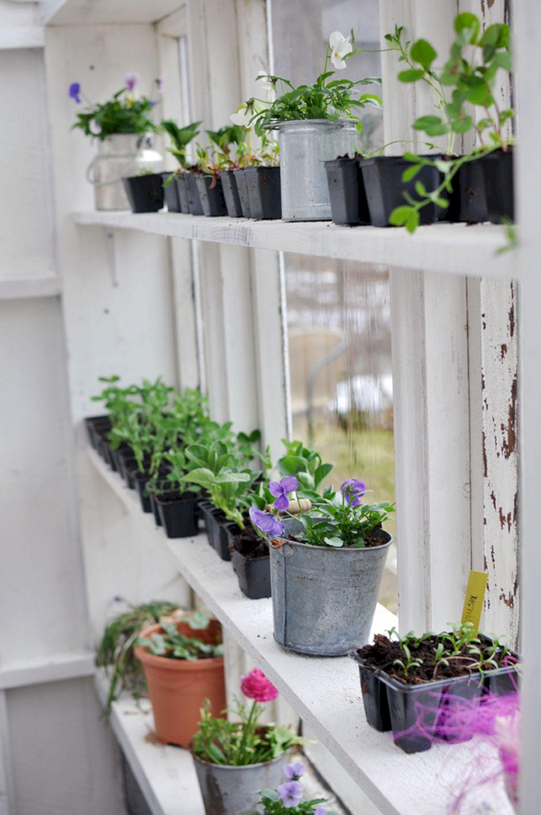 Popular Indoor Garden Ideas