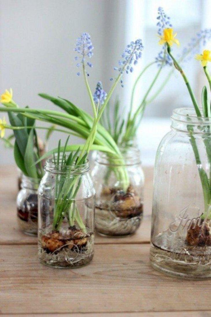 Simple DIY Indoor Garden