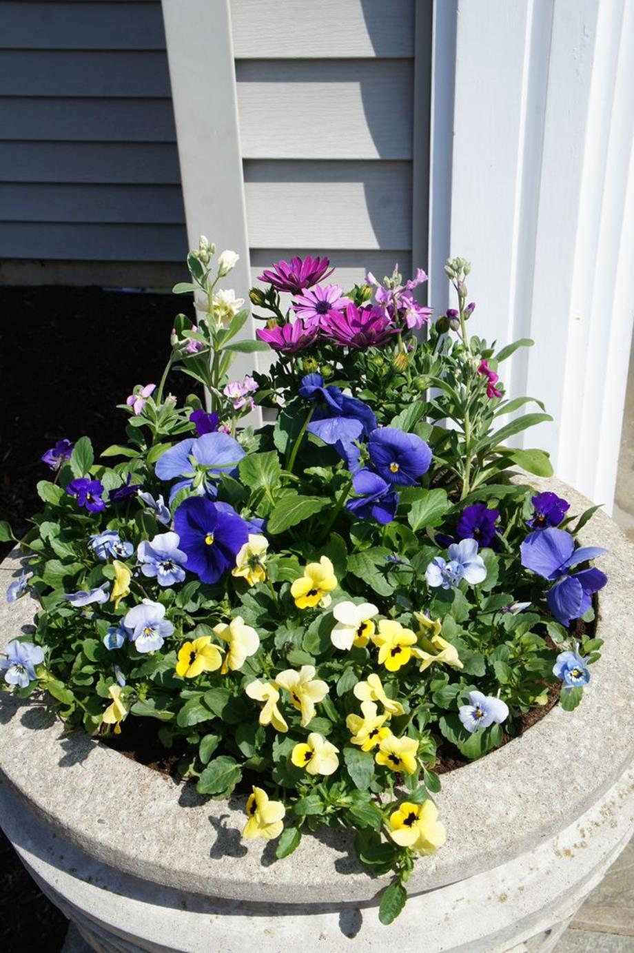 Spring Container Gardening Ideas 12
