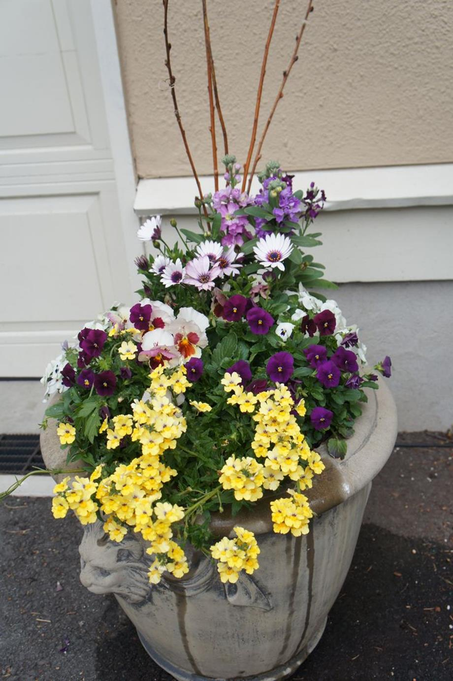 Spring Container Gardening Ideas 18