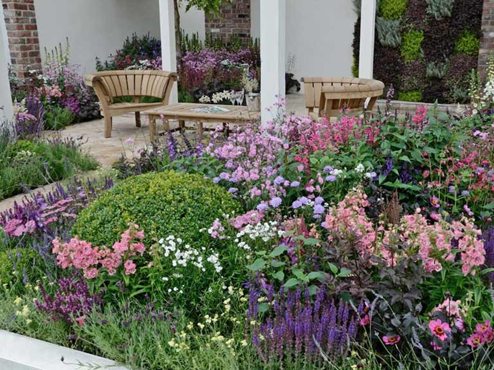 Best Plants for a Cottage Garden and Design Ideas 12