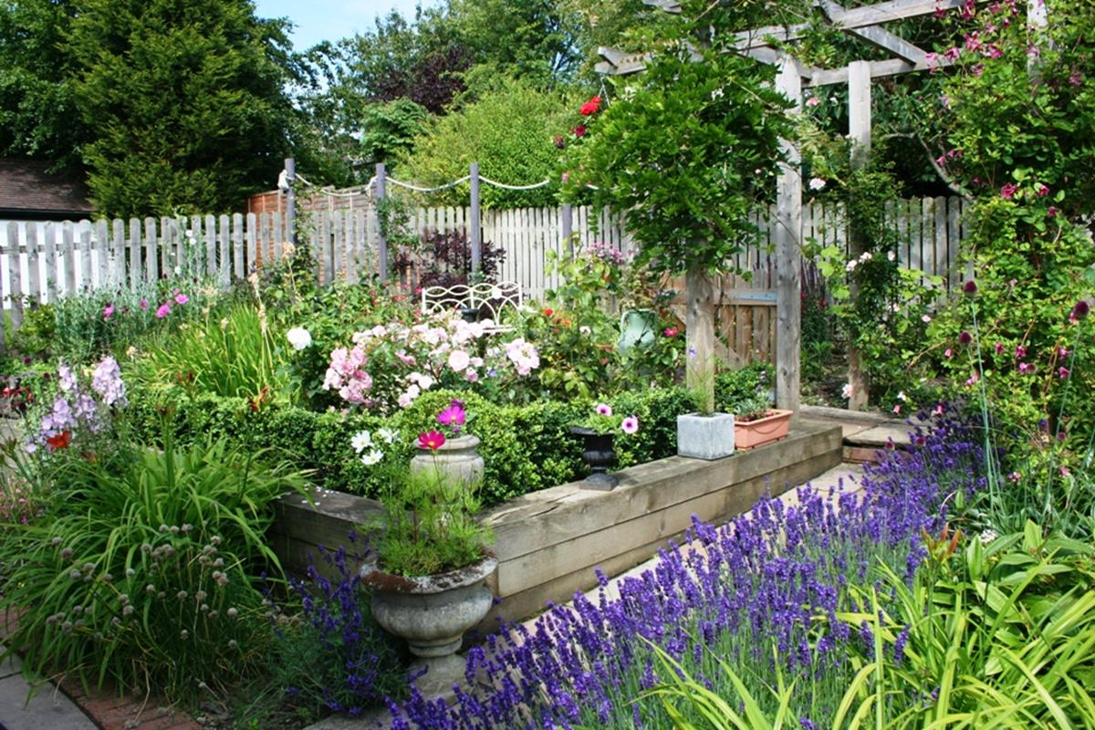 Best Plants for a Cottage Garden and Design Ideas 19