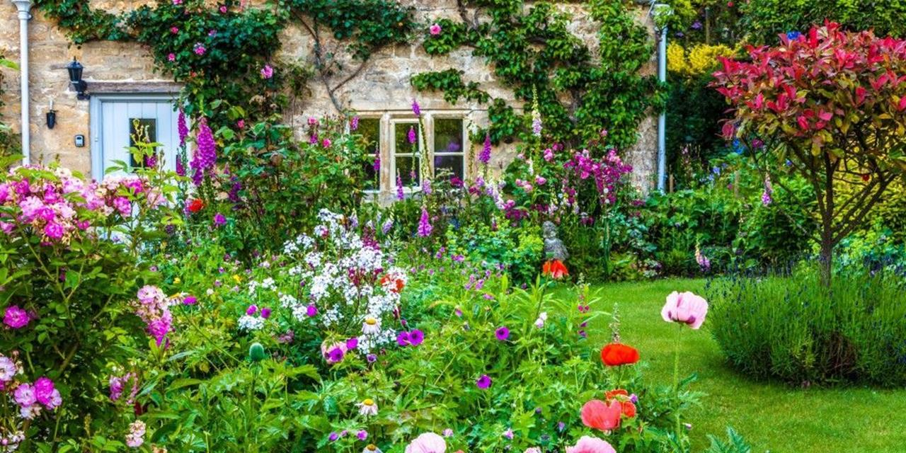 Best Plants for a Cottage Garden and Design Ideas 32