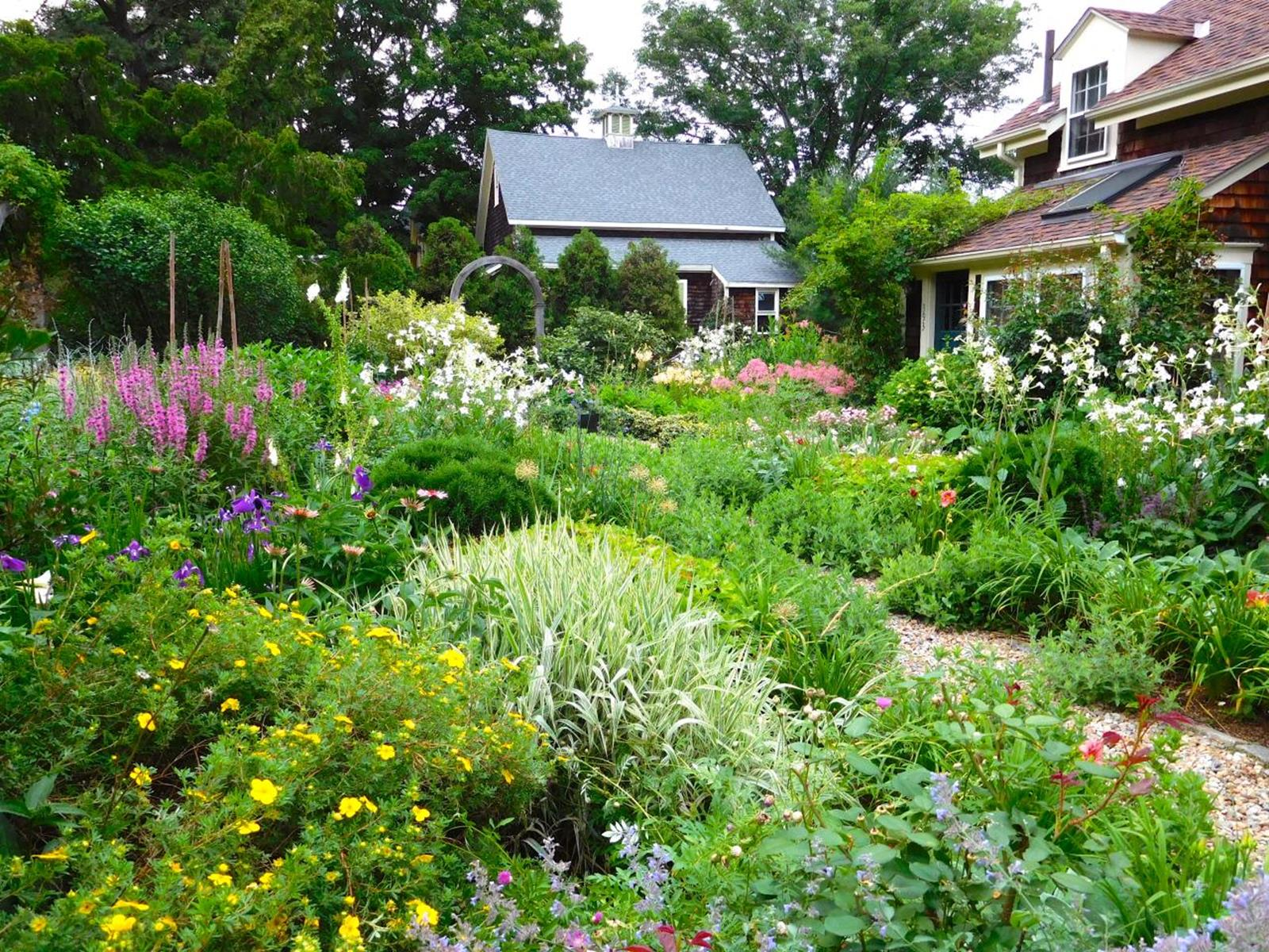 Best Plants for a Cottage Garden and Design Ideas 34