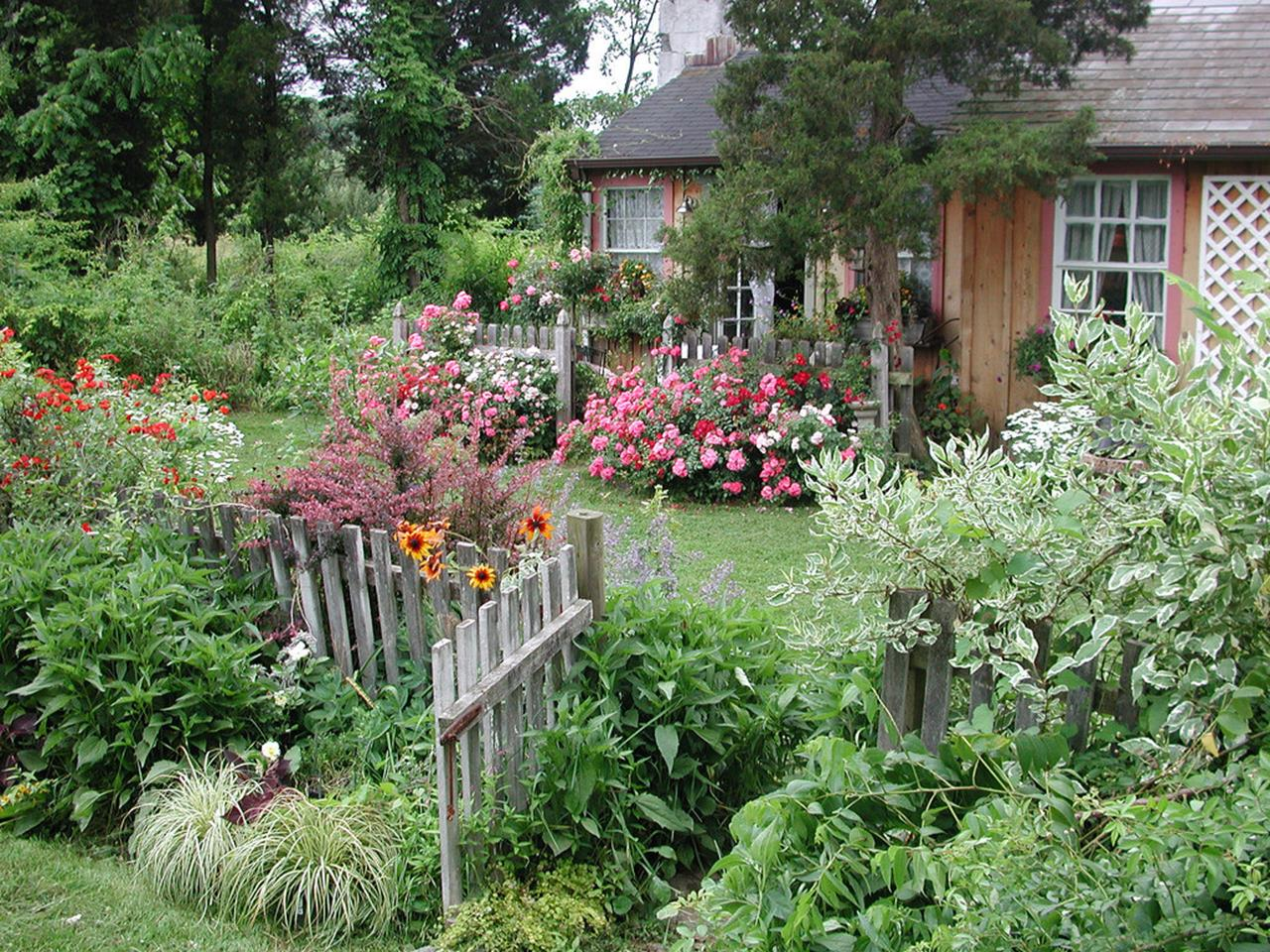 Best Plants for a Cottage Garden and Design Ideas 6