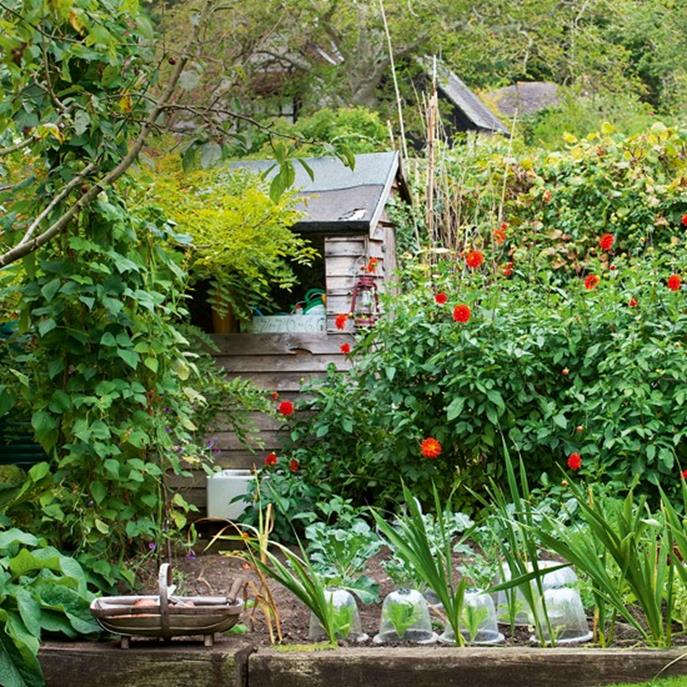 Stunning Country Cottage Gardens Ideas 13