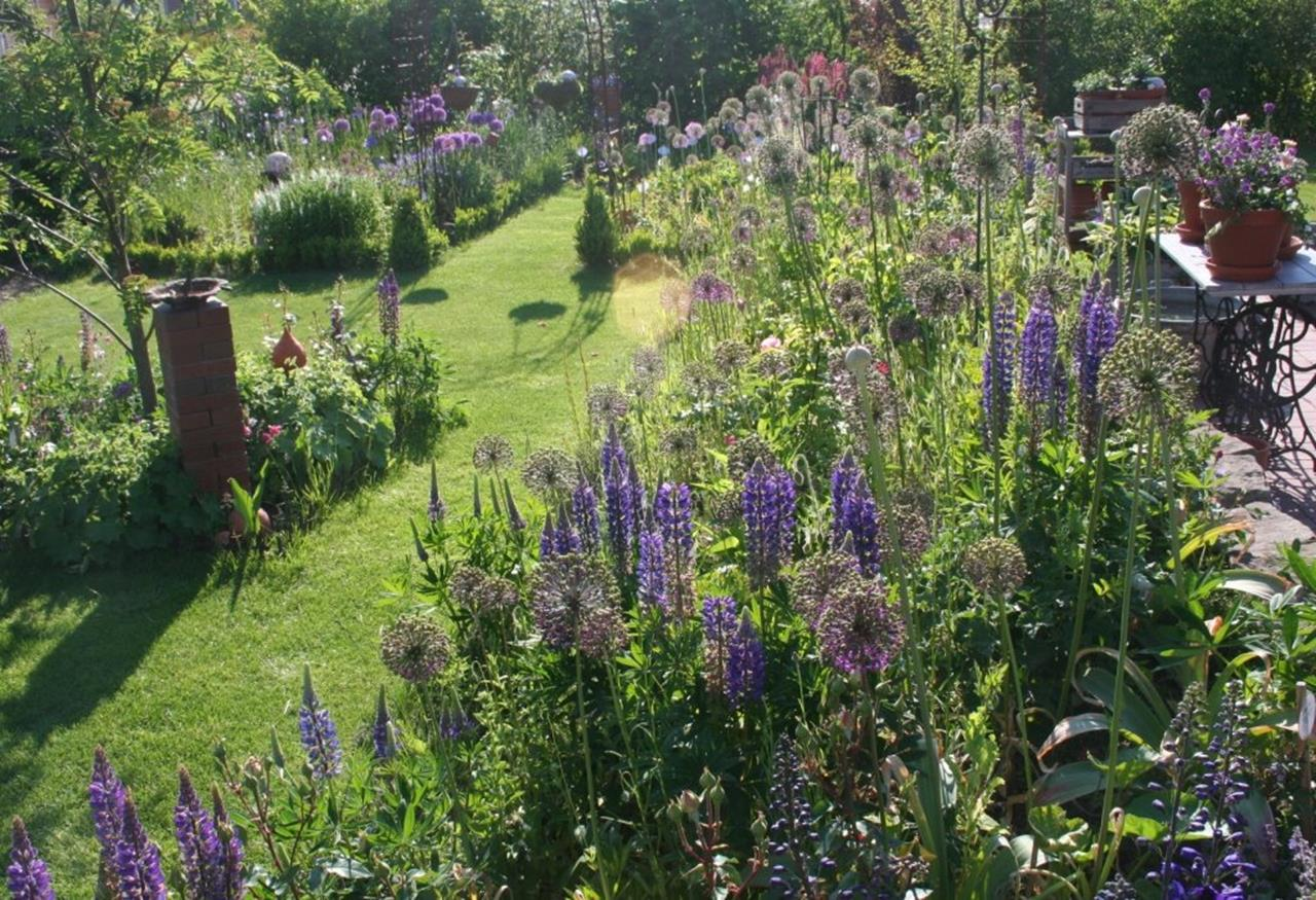 Stunning Country Cottage Gardens Ideas 17