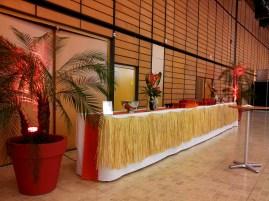 Décoration de buffet thème Brésil