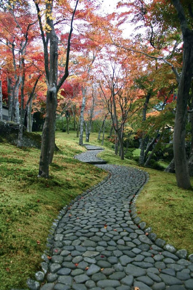 Beautiful Stone Path around Flowers 29