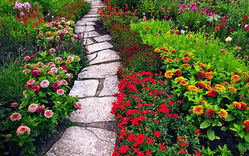 Beautiful Stone Path around Flowers 30