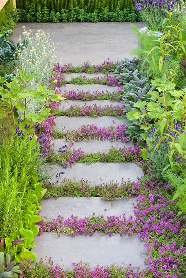 Beautiful Stone Path around Flowers 34
