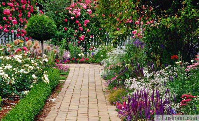 Beautiful Stone Path around Flowers 47