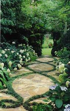 Beautiful Stone Path around Flowers 49