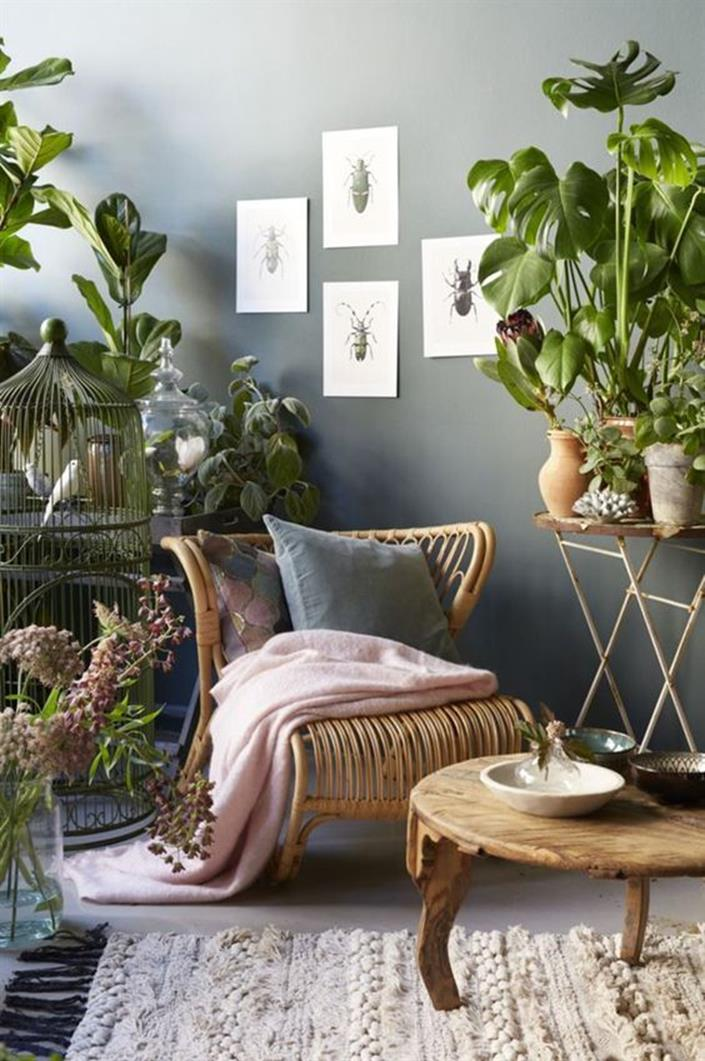 Urban Jungle Room Decor 1