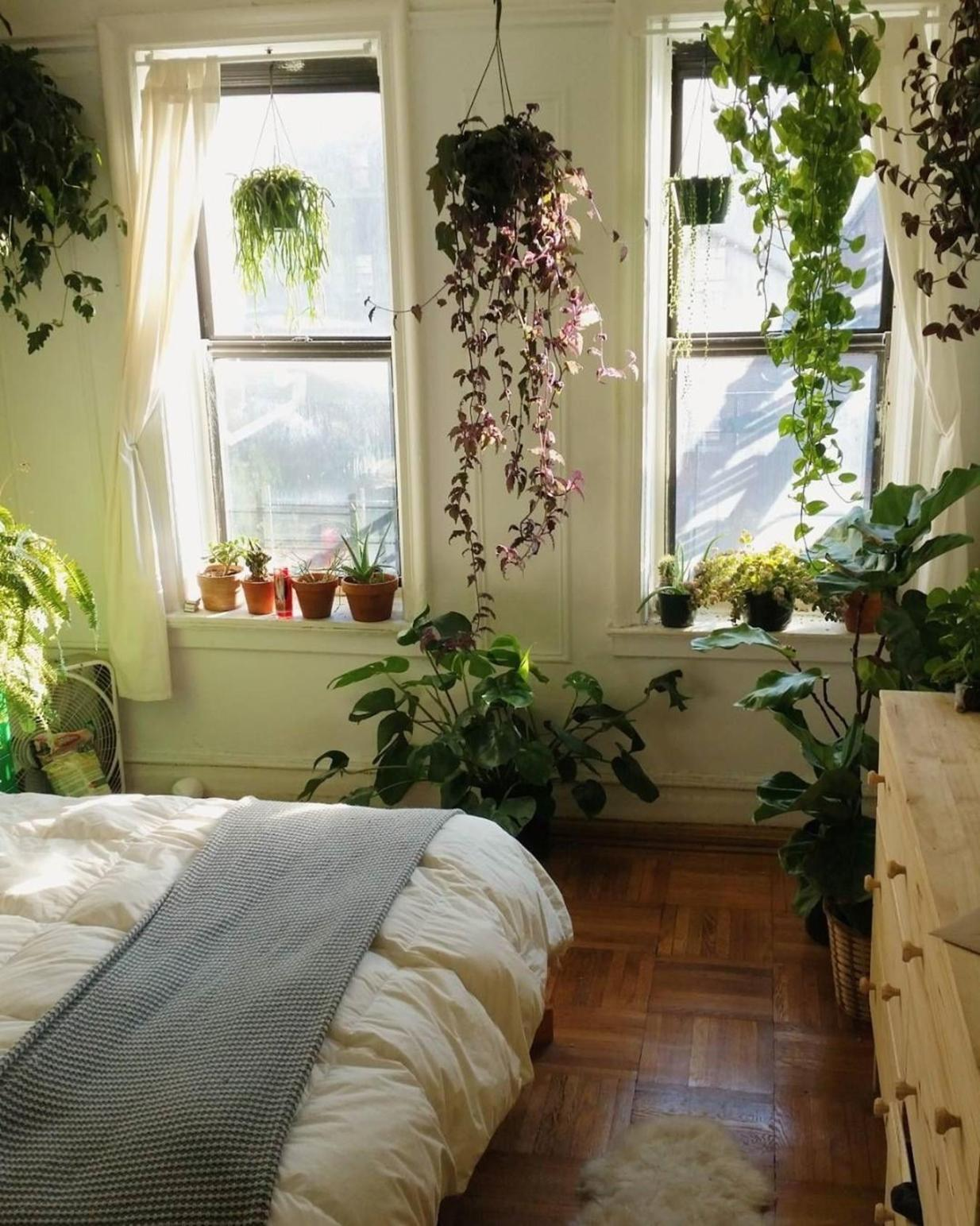 Urban Jungle Room Decor 23