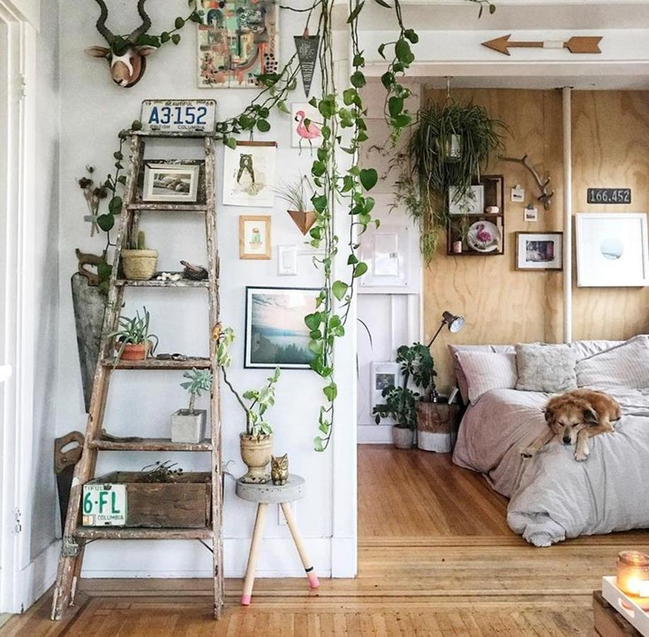 Urban Jungle Room Decor 8