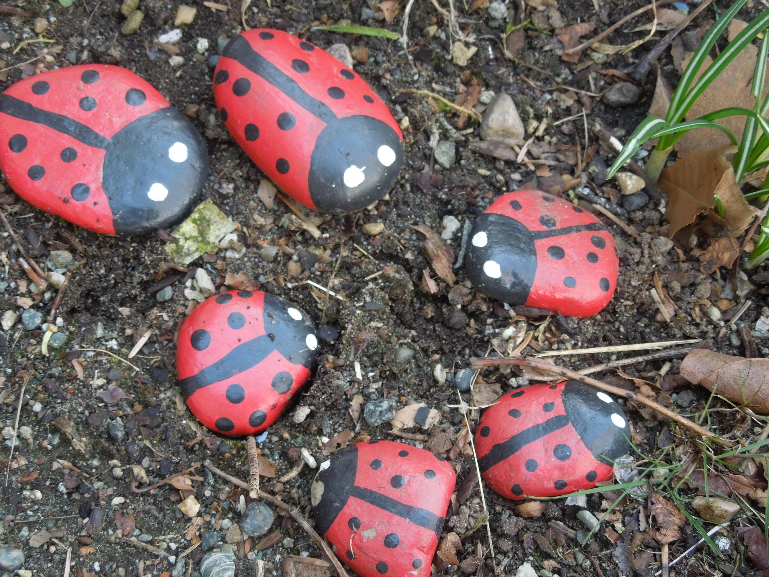 Simple Painted Rock Ideas For Garden 6