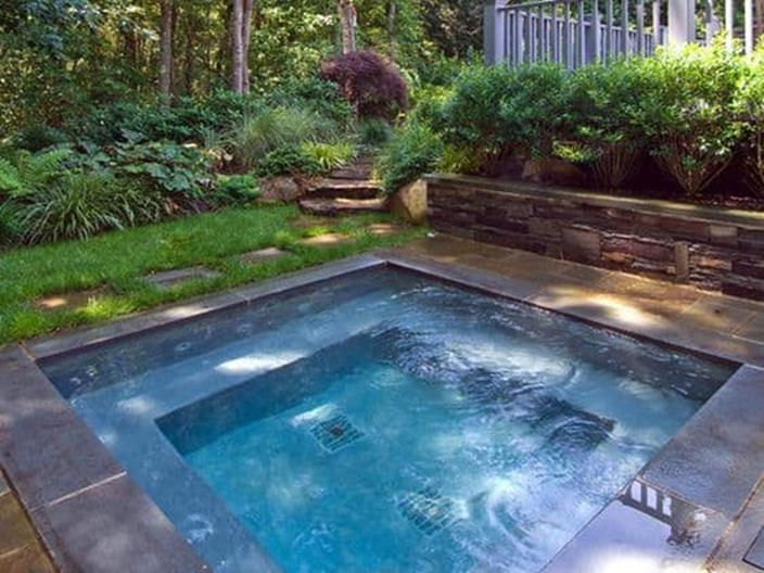 Affordable Small Backyard with Plunge Pool 4