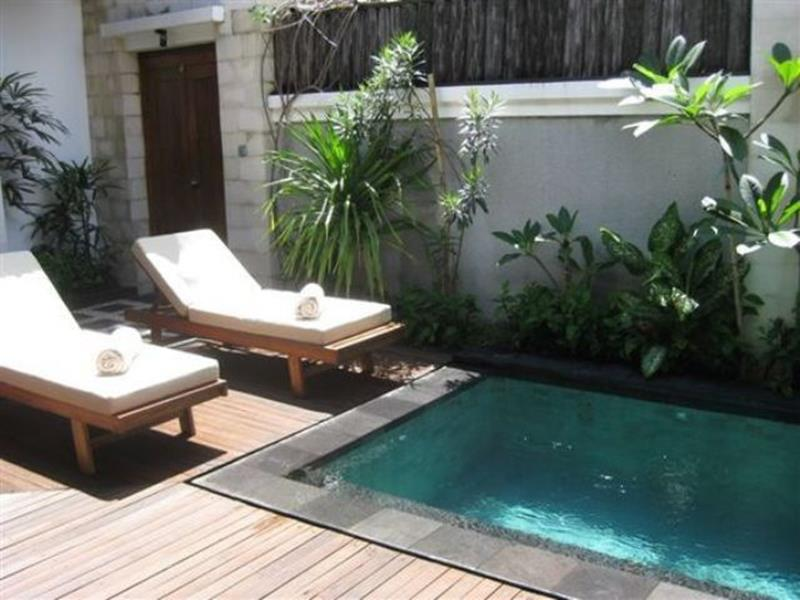 Affordable Small Backyard with Plunge Pool 9
