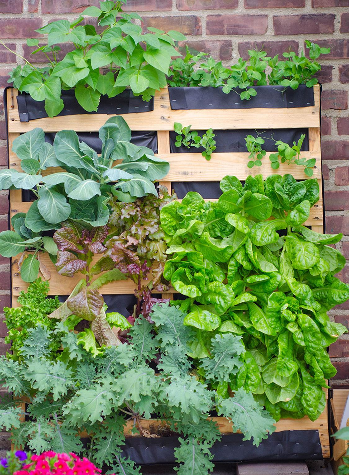 Upcycled Wood Pallet Gardens 13