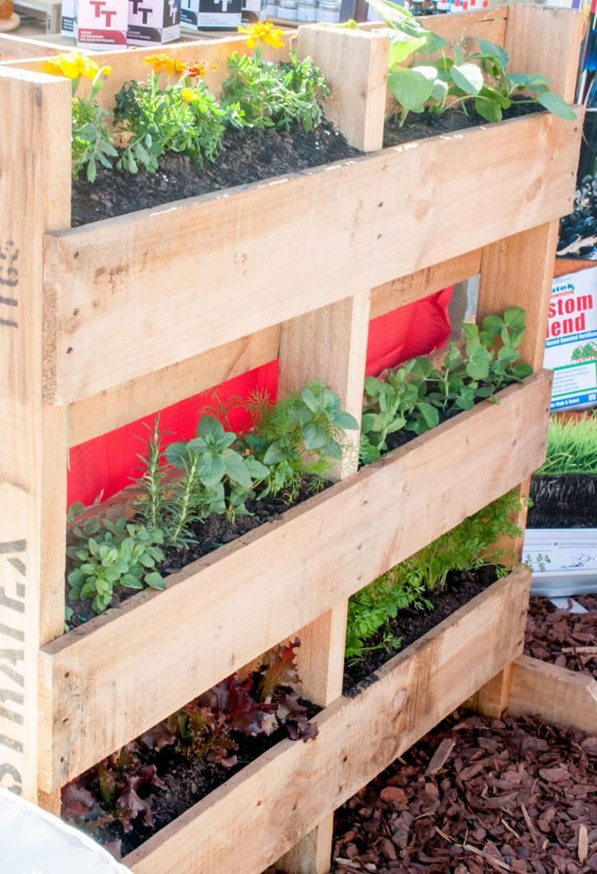 Upcycled Wood Pallet Gardens 4