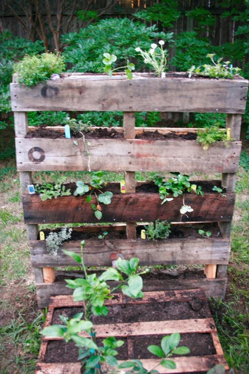 Gardening Ideas With Wood Pallets 12