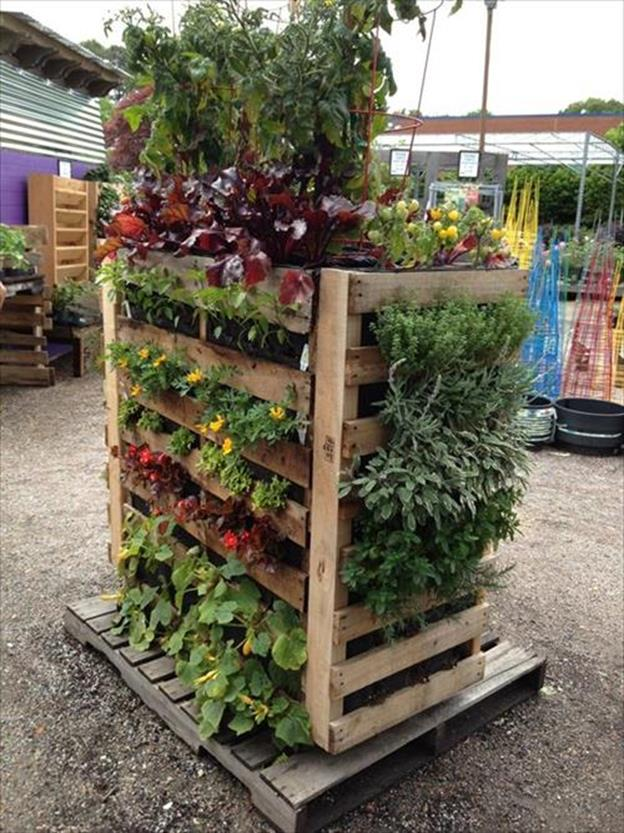 Gardening Ideas With Wood Pallets 4