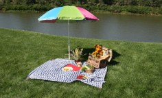 fun-picnic-ideas-creative-uses-packed-things-660x400