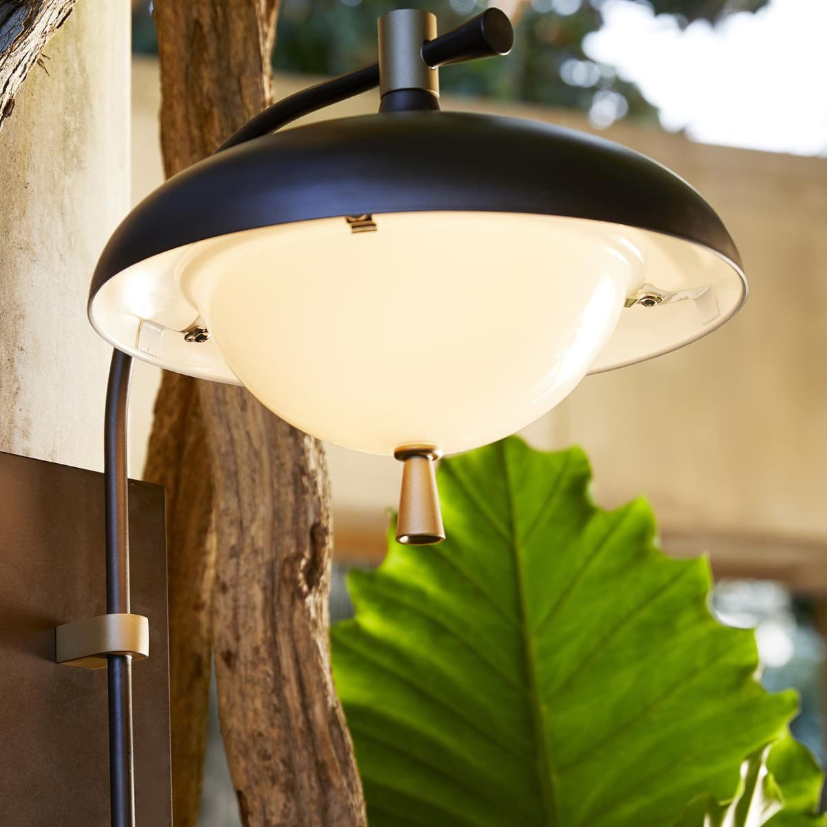 how to choose the right light bulb for