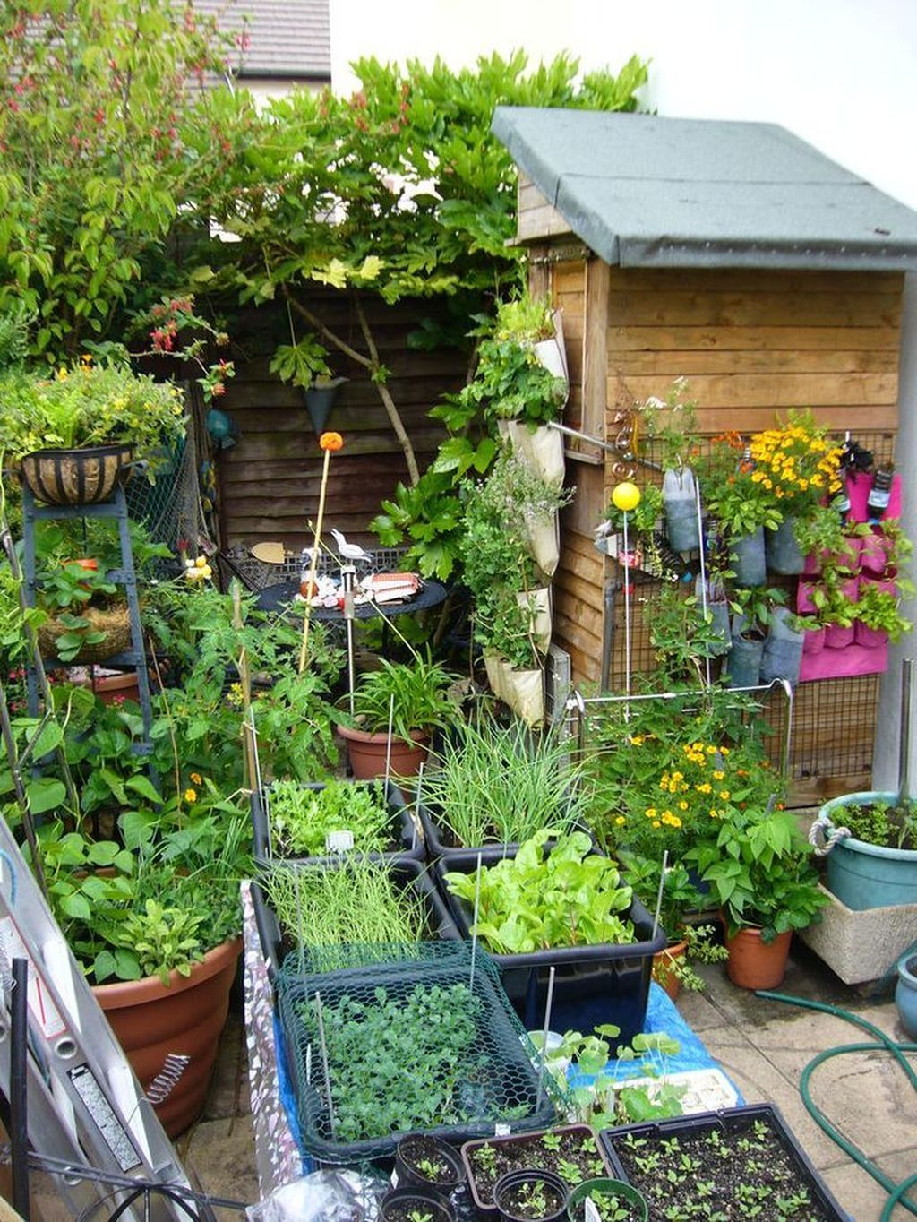 Amazing Garden Design Ideas For Small Space To Try 31