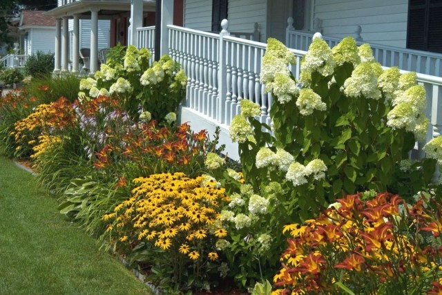 Inspiring Hydrangeas Landscaping Design Ideas To Copy Right Now 08