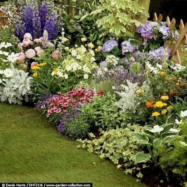 Inspiring Hydrangeas Landscaping Design Ideas To Copy Right Now 12