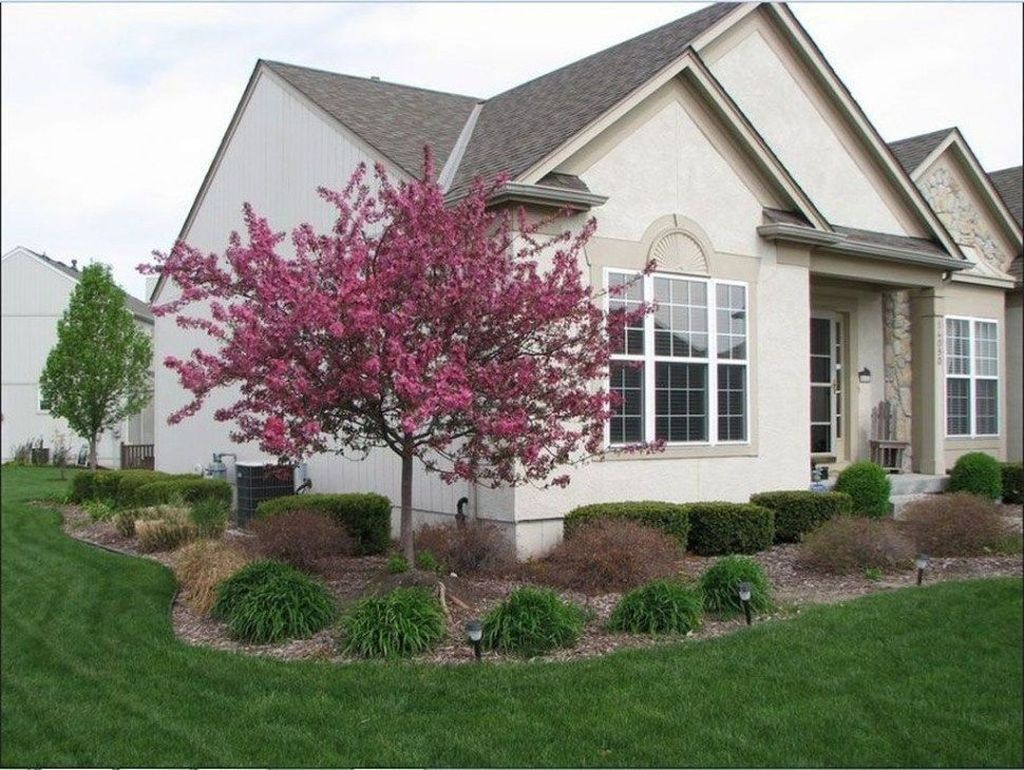 Lovely Flowering Tree Ideas For Home Yard To Copy Now 31