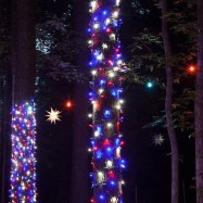 Pretty Space Decoration Ideas With Christmas Tree Lights 02
